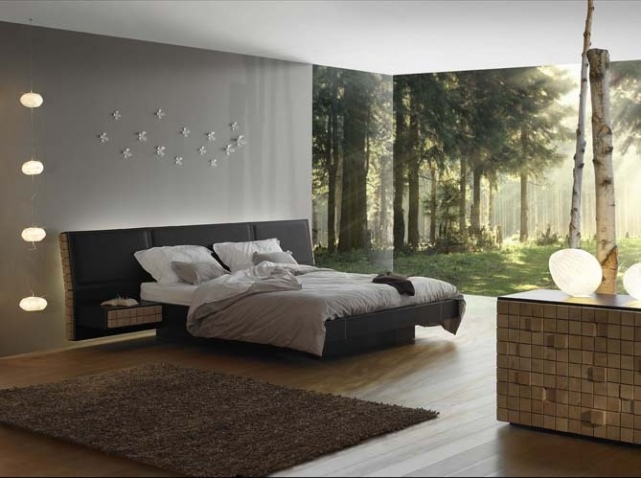 decoration chambre lit noir visuel 3. Black Bedroom Furniture Sets. Home Design Ideas