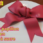 faire decoration pate a sucre