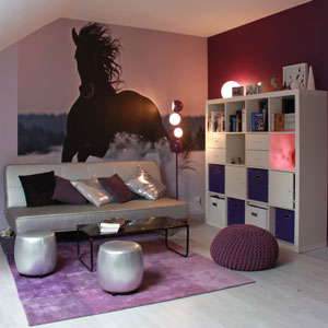 deco chambre fille theme cheval visuel 1. Black Bedroom Furniture Sets. Home Design Ideas