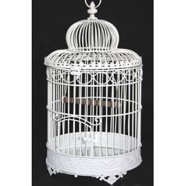 cage oiseau decorative occasion visuel 2. Black Bedroom Furniture Sets. Home Design Ideas