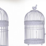 cage oiseaux decorative