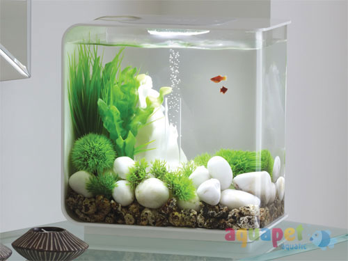 Decoration Aquarium Villaverde
