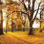 week end sympa novembre