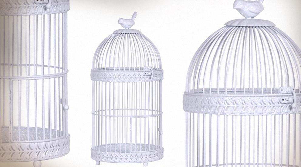 cage oiseau decorative blanche visuel 4. Black Bedroom Furniture Sets. Home Design Ideas