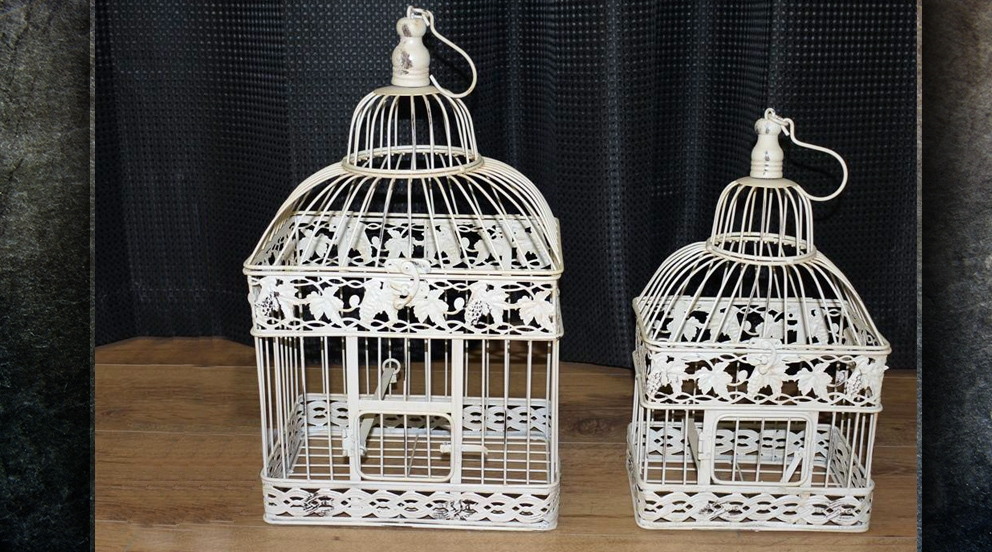 cage oiseau deco belgique visuel 8. Black Bedroom Furniture Sets. Home Design Ideas