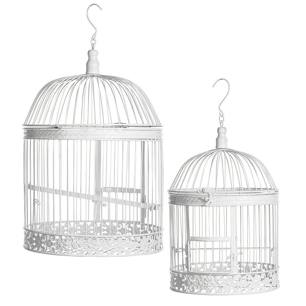Cage oiseau deco belgique - Cage oiseau decoration ...