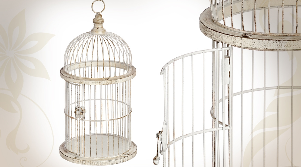 cage oiseau decoration