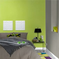 Chambre Vert Et Gris Photos - Design Trends 2017 - shopmakers.us