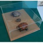 fabriquer une boite deco en plexiglas