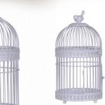 cage oiseau decorative interieur