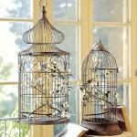 cage decorative pour oiseaux