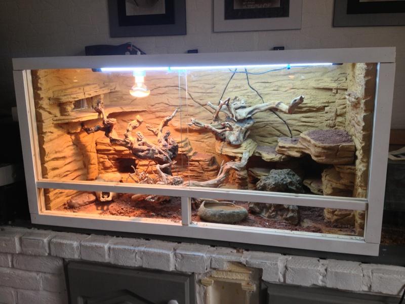 Fabriquer decor terrarium visuel 3 - Decor fond terrarium desertique ...