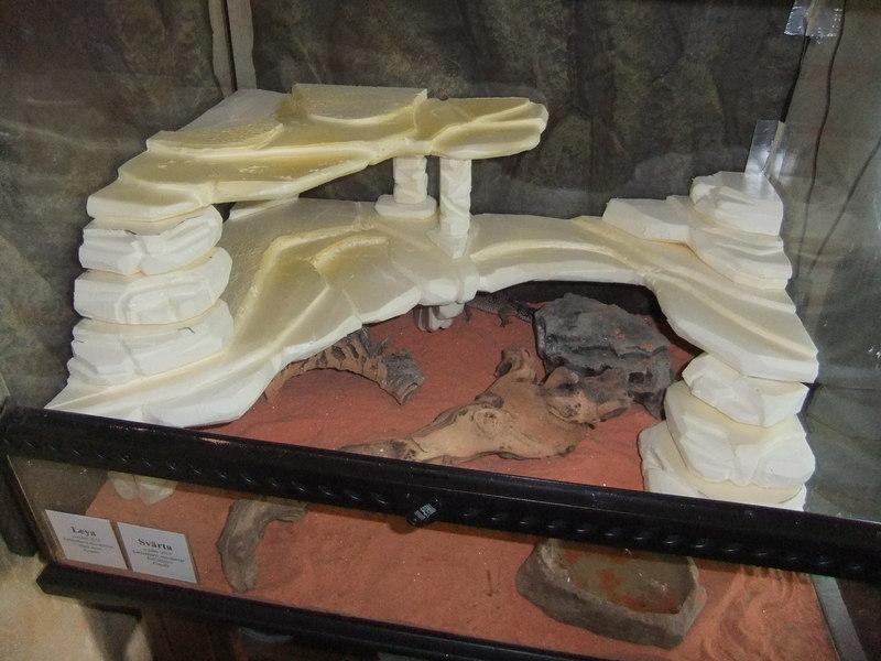 Fabriquer decor terrarium visuel 4 - Decor fond terrarium desertique ...