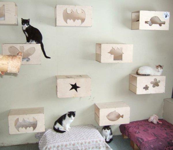 chat decoration maison avie home. Black Bedroom Furniture Sets. Home Design Ideas